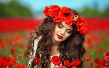 цветы, девушка, поле, лето, красные, маки, макияж, прическа, венок, шатенка, боке