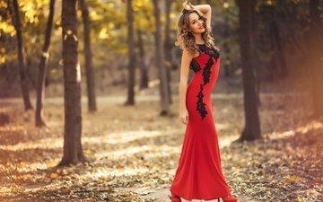 деревья, девушка, парк, улыбка, листва, осень, модель, красное платье, артём барташ