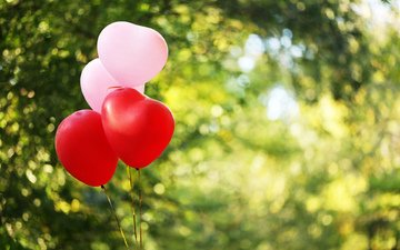 nature, greens, blur, balloons, hearts