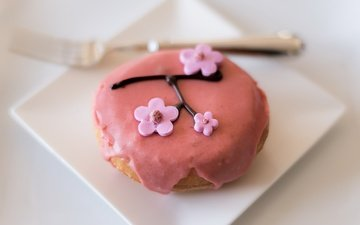 sakura, sweet, decoration, dessert, glaze, cake