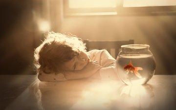 water, table, girl, child, aquarium, fish, goldfish, sveta butko
