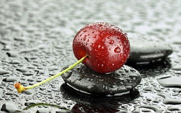 macro, drops, berry, petals, heart, stone, cherry