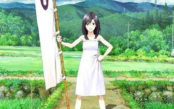 девушка, взгляд, аниме, волосы, лицо, summer wars, shinohara natsuki