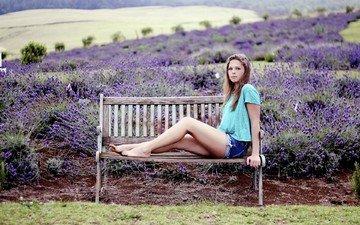 цветы, лаванда, модель, джинсы, ноги, скамья, шорты, сидя, anneka j