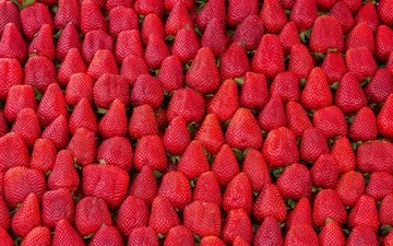 food, strawberry, berries, abundance