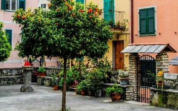 улица, италия, здания, чинкве-терре