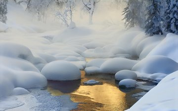 light, trees, river, snow, nature, forest, winter, haze