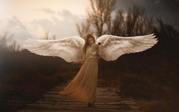 девушка, крылья, ангел, креатив, araceli bazan