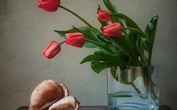 цветы, тюльпаны, ваза, ракушка, раковина, натюрморт
