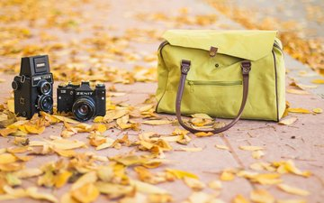 leaves, autumn, bag, camera, cameras