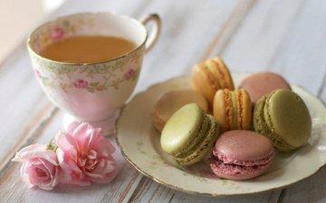 flowers, roses, saucer, cup, tea, sweet, cookies, cakes, dessert, macaroon