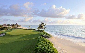 the sky, clouds, sea, beach, palm trees, tropics, golf club