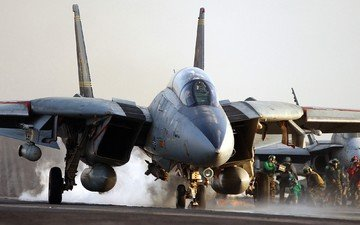 the plane, fighter, air, f-14 tomcat