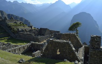 grass, mountains, tree, landscape, the city, ruins, stone, architecture, civilization, peru, machu picchu, south america