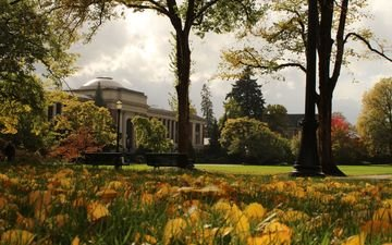 grass, leaves, park, autumn, the building, oregon, the old building