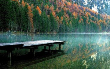 trees, lake, river, nature, reflection, morning, autumn, pierce