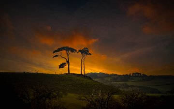 the sky, clouds, trees, hills, nature, sunset, hill