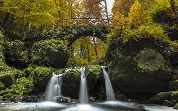 trees, river, bridge, waterfall, autumn, moss, luxembourg