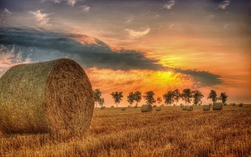 the sky, clouds, trees, sunset, field, horizon, hay, summer