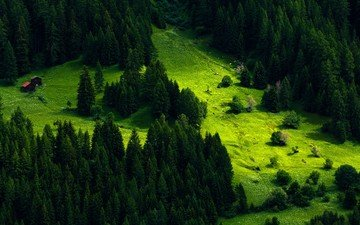 grass, trees, greens, slope, mountain, houses, switzerland, meadow