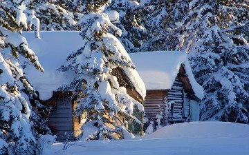 trees, snow, nature, winter, houses, usa, alaska