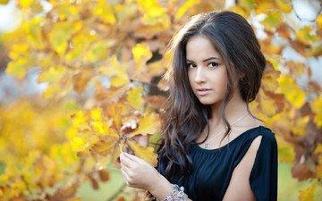 nature, tree, leaves, girl, portrait, brunette, autumn, model, face, black dress, long hair