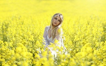 nature, plants, girl, blonde, field, look, meadow, hair, face, neckline, rape, yellow flowers