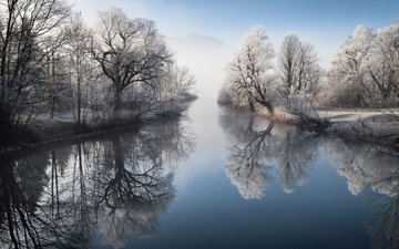 trees, lake, nature, winter, reflection, landscape, park