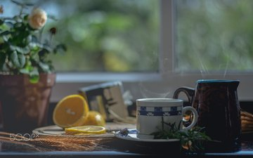 flowers, lemon, mug, window, tea