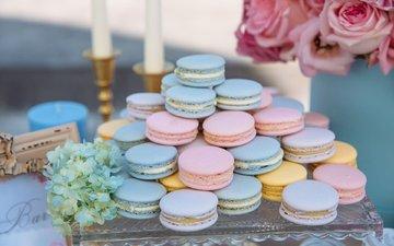 cookies, cakes, dessert, macaroon