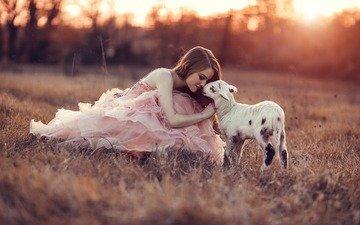 трава, закат, девушка, настроение, козленок, розовое платье