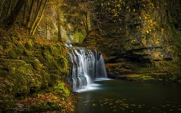 river, nature, leaves, waterfall, autumn