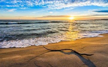 небо, облака, ветка, волны, закат, пейзаж, море, песок, пляж