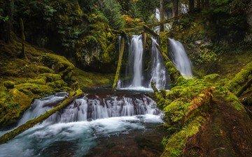 природа, парк, водопад, сша, мох, водопады, silver falls state park