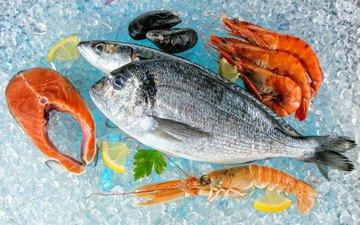 лёд, лимон, рыба, морепродукты, креветки