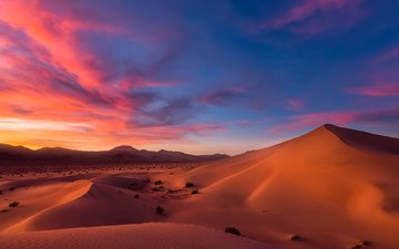the sky, clouds, sand, horizon, desert, sunset, twilight, dunes