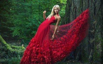 дерево, девушка, поза, блондинка, взгляд, модель, волосы, лицо, красное платье