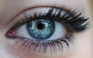 eyes, the pupil, eyelashes