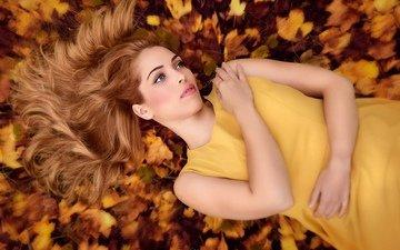 листья, девушка, взгляд, осень, модель, волосы, лицо, макияж, желтое платье