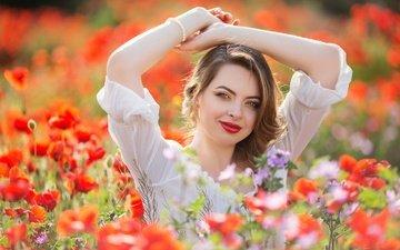 цветы, девушка, взгляд, маки, луг, волосы, губы, лицо, руки