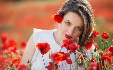 цветы, девушка, взгляд, маки, модель, лицо, красные губы