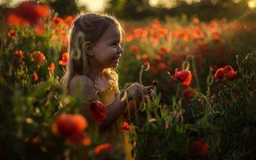 цветы, солнце, улыбка, взгляд, дети, маки, девочка, волосы, лицо, ребенок, цветы, gевочка