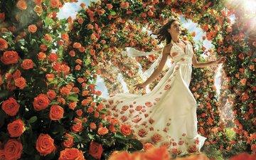 девушка, брюнетка, розы, модель, цветы, свадебное платье