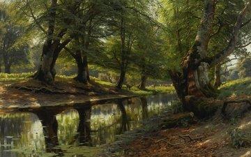 trees, nature, picture, reflection, landscape, peder mørk mønsted, peter merk of menstad
