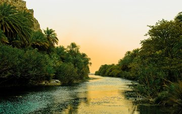 the sky, trees, river, shore, palm trees, greece, tropics, vegetation, shrubs, crete
