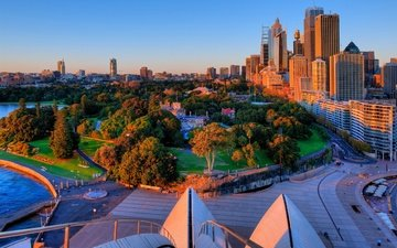 trees, the evening, the sun, sunset, park, the view from the top, home, sydney, building, australia, royal botanical gardens
