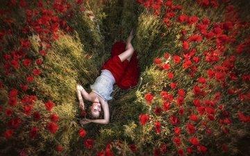 цветы, девушка, поле, лето, сон, мечты, маки, модель позирует, очарование, ilona-b