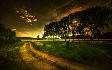 road, grass, clouds, trees, landscape