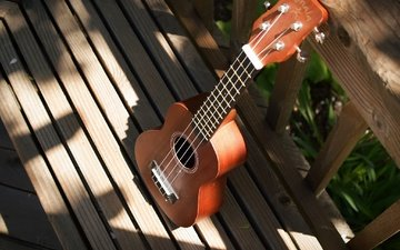 background, guitar, strings, musical instrument, ukulele