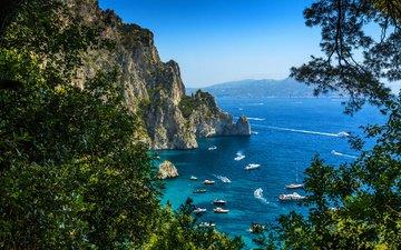 скалы, природа, море, скала, ветви, лето, яхты, побережье, италия, капри